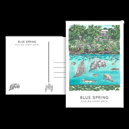 Blue Spring State Park Postcard