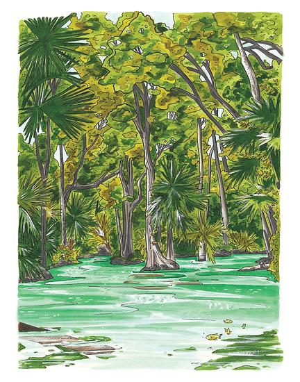 emerald cut print-01.png