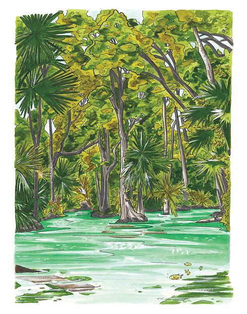 Emerald Cut Rock Springs Run Print
