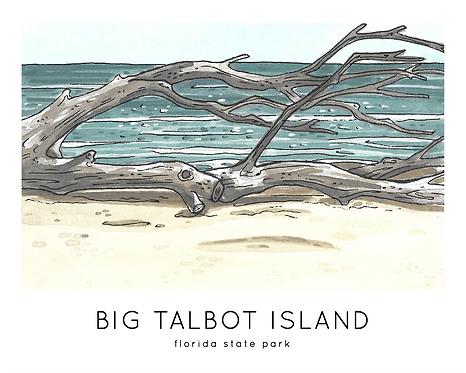 Big Talbot Island Florida State Park Print