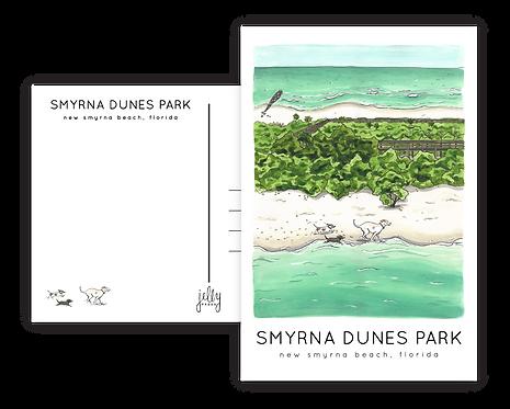 Smyrna Dunes Park Postcard