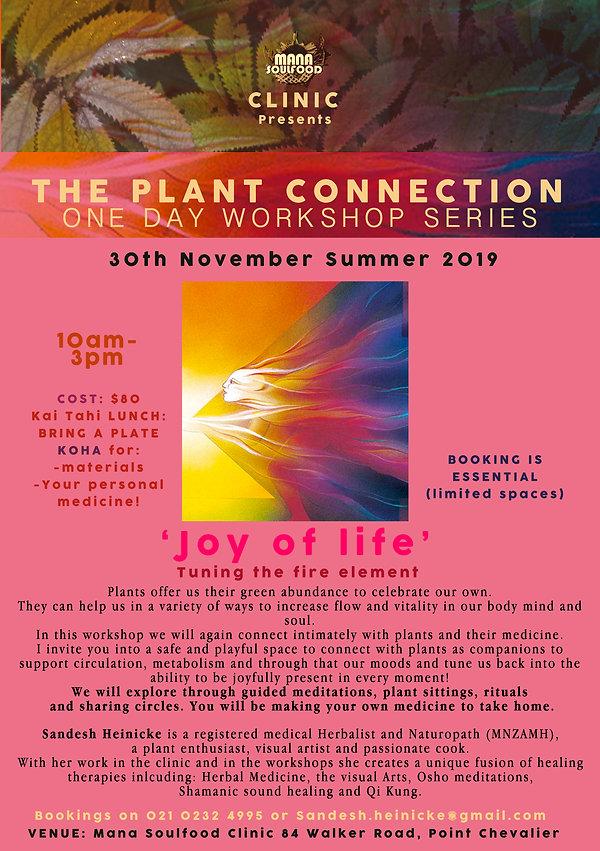 SUMMER 2019 Plant workshop flyer.jpeg