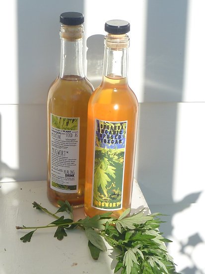 MUGWORT VINEGAR Infusion 375ml