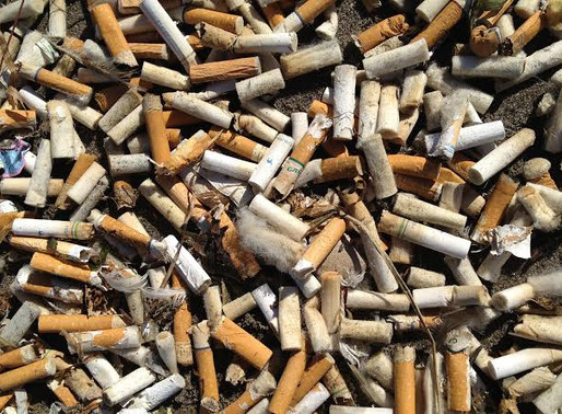 Study Declares Cigarette Chemical Levels 'Not Toxic to Humans and Environment'