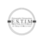 Logo ESTIM.png