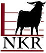 NKR Logo-color-medium.jpg