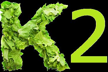 Role of Vitamin K2