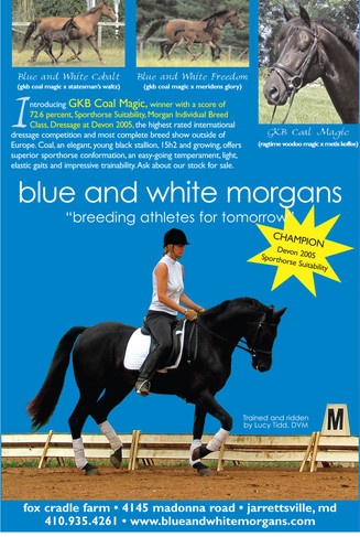 Advertisement: Blue and White Morgans