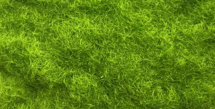 【GRS0300】960 mL  Static Grass, 3mm Fibers