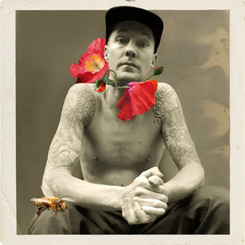 DRAPHT - SUMMER THEY SAY