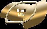 button B life -min.png