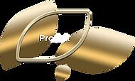 button produk-min.png