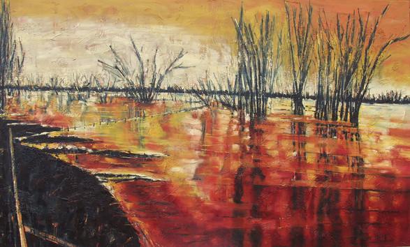 """""""Marée rouge"""" 2004"""