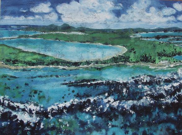 """Blue Malacots"" 2004"