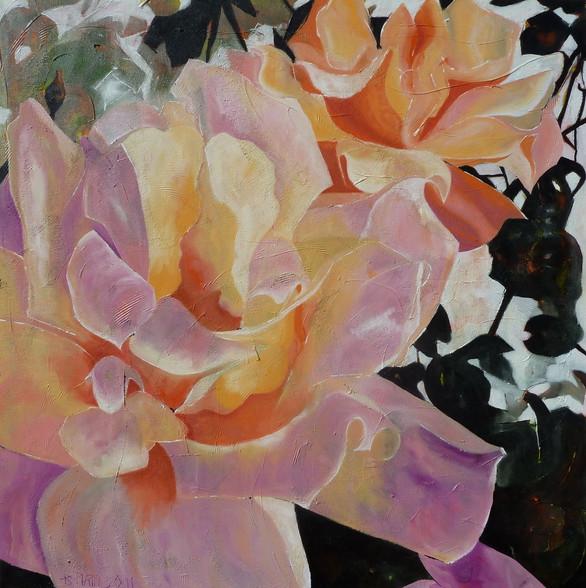 """""""Roses rose"""" 2011"""