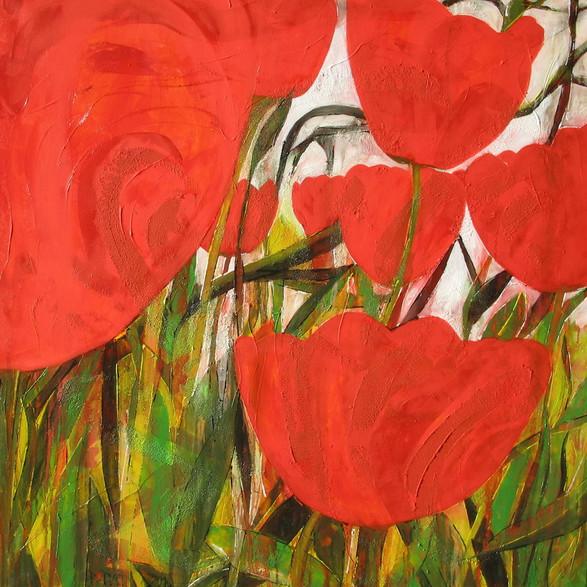 """""""Willy's Tulpen"""" 2010"""