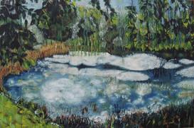"""""""Malacots jungle"""" 2004"""