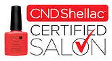 salone certificato Shellac