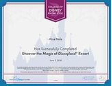 disneyland certificate.jpg