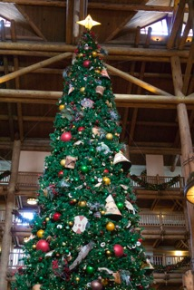 Wilderness Lodge at Christmas turns into a magical wonderland.
