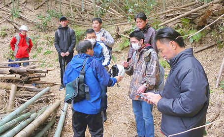 鎌倉極楽寺の竹林間伐風景