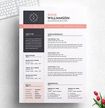 29_kane-williamson_resume-inventor-_edit