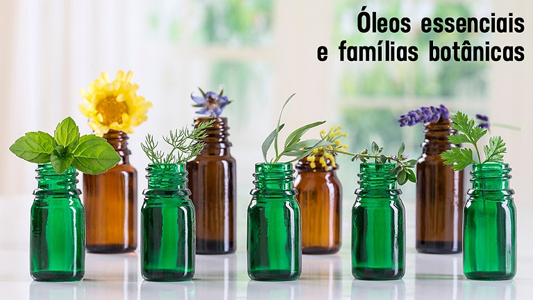 Curso on-line: Óleos essenciais e famílias botânicas
