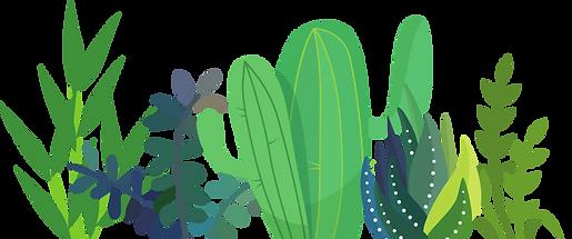 plantas.png