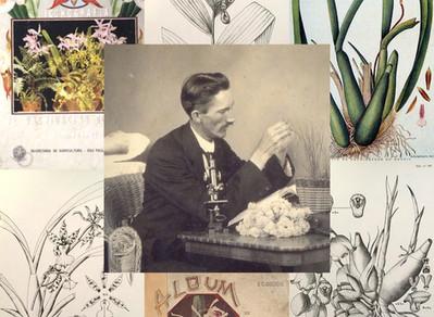 Frederico Carlos Hoehne, um memorável botânico brasileiro