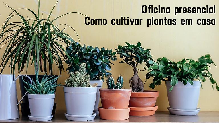 Oficina presencial: Como cultivar plantas em casa