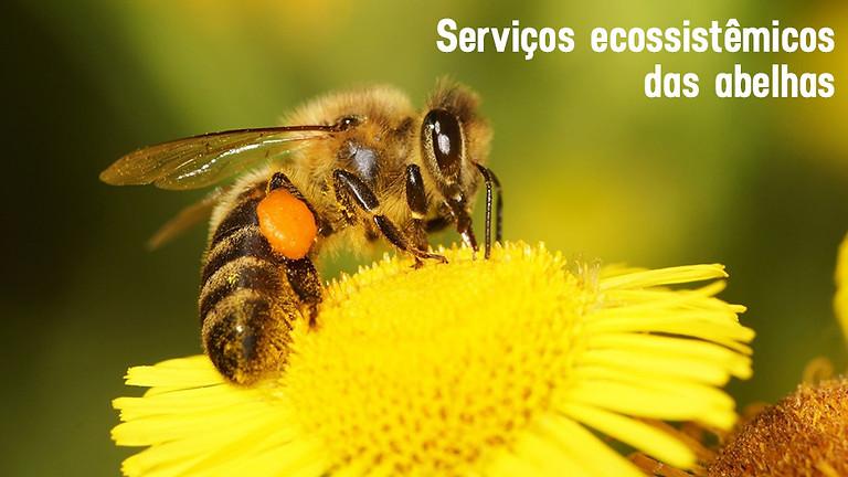 Plantando ideias: Serviços ecossistêmicos das abelhas