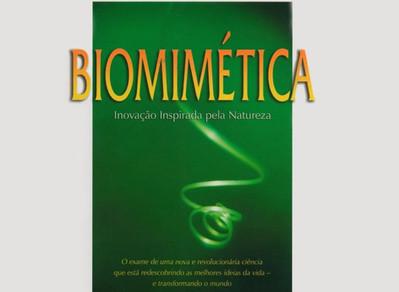 Biomimética: Inovação Inspirada pela Natureza