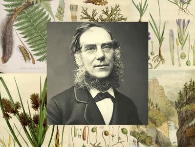 Hooker, o botânico e amigo de Charles Darwin