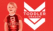 ToddlerDragon_Package.jpg