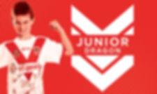 JuniorDragon_Package.jpg