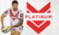 Platinum_Package.jpg