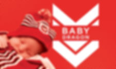 BabyDragon_Package.jpg
