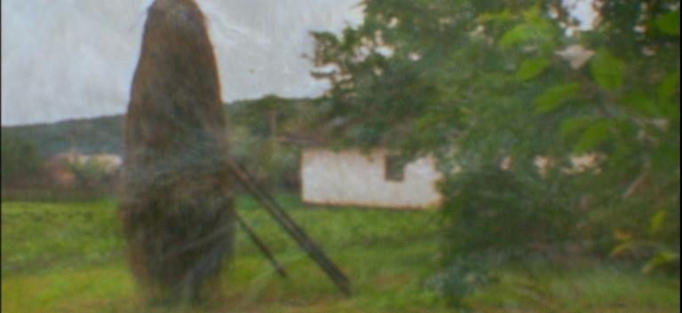 תמונה מתוך הסרט התיעודי השולחן של אפלפלד
