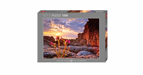 1000PC PUZZLE - RED CAMPION - 29671