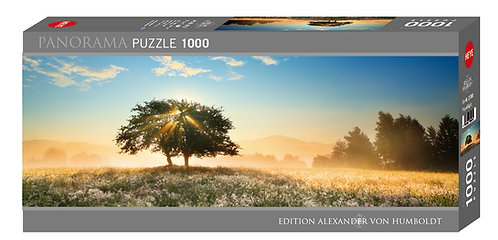 1000PC PUZZLE - PLAY OF LIGHT - 29901