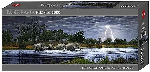2000PC PUZZLE - HERD OF ELEPHANTS - 29508
