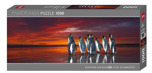 1000PC PUZLE - KING PENGUINS - 29858