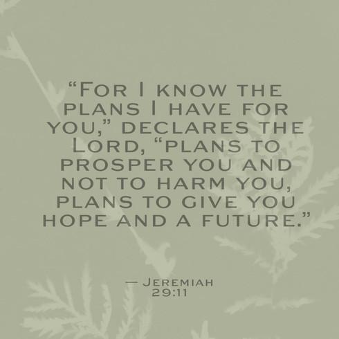 Jeremiah 29:11.jpg