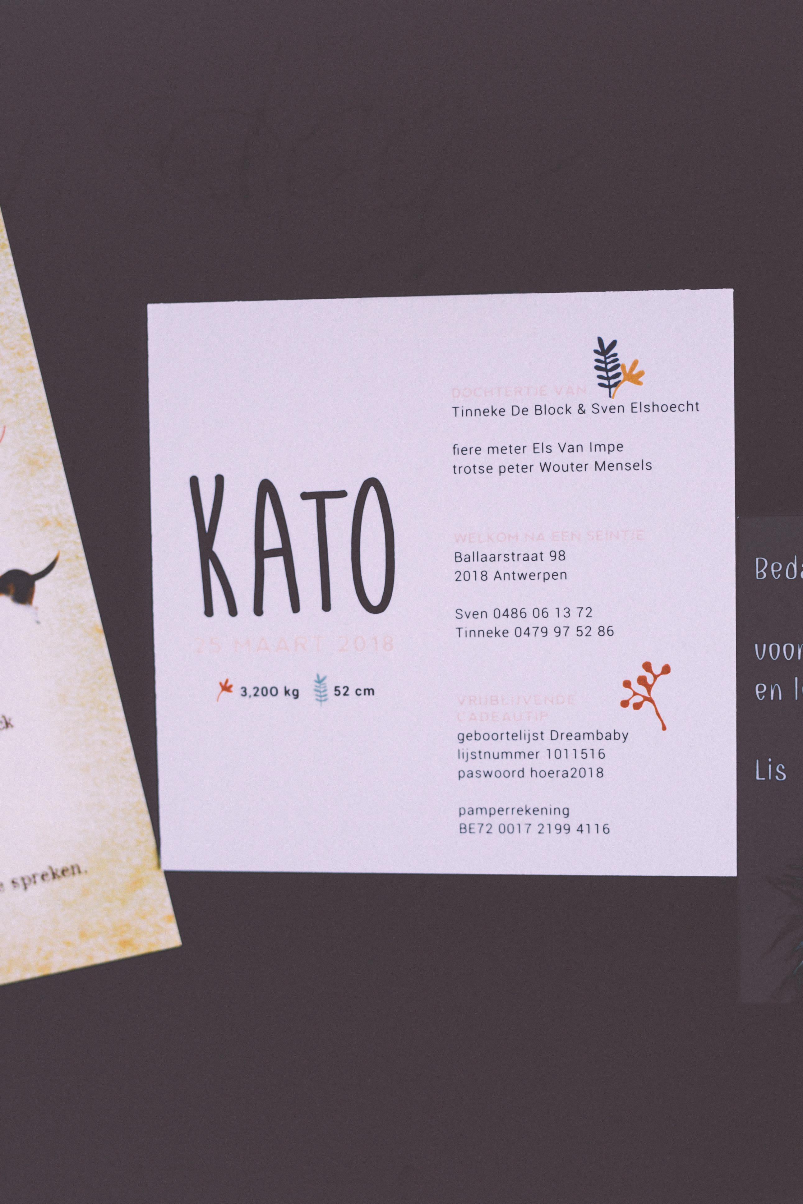 kato-0749