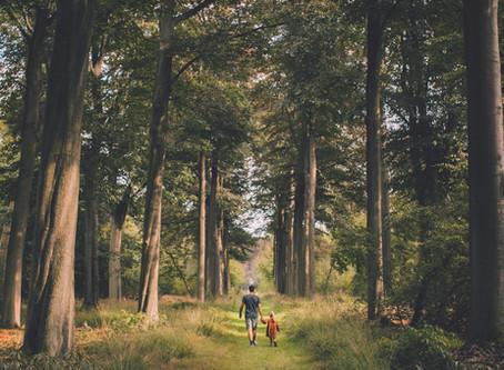 Nazomeren en de herfst omarmen in het wild kasteelpark Vordenstein (Schoten)