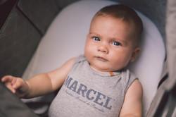 MARCEL-8411