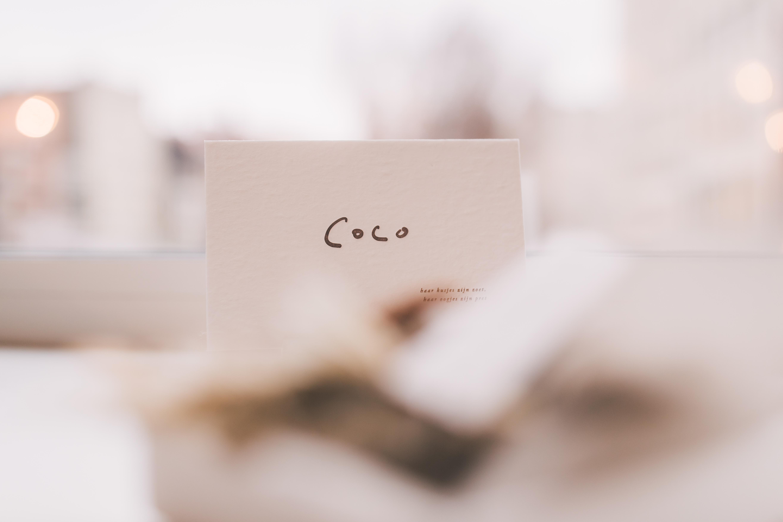 COCO-2028