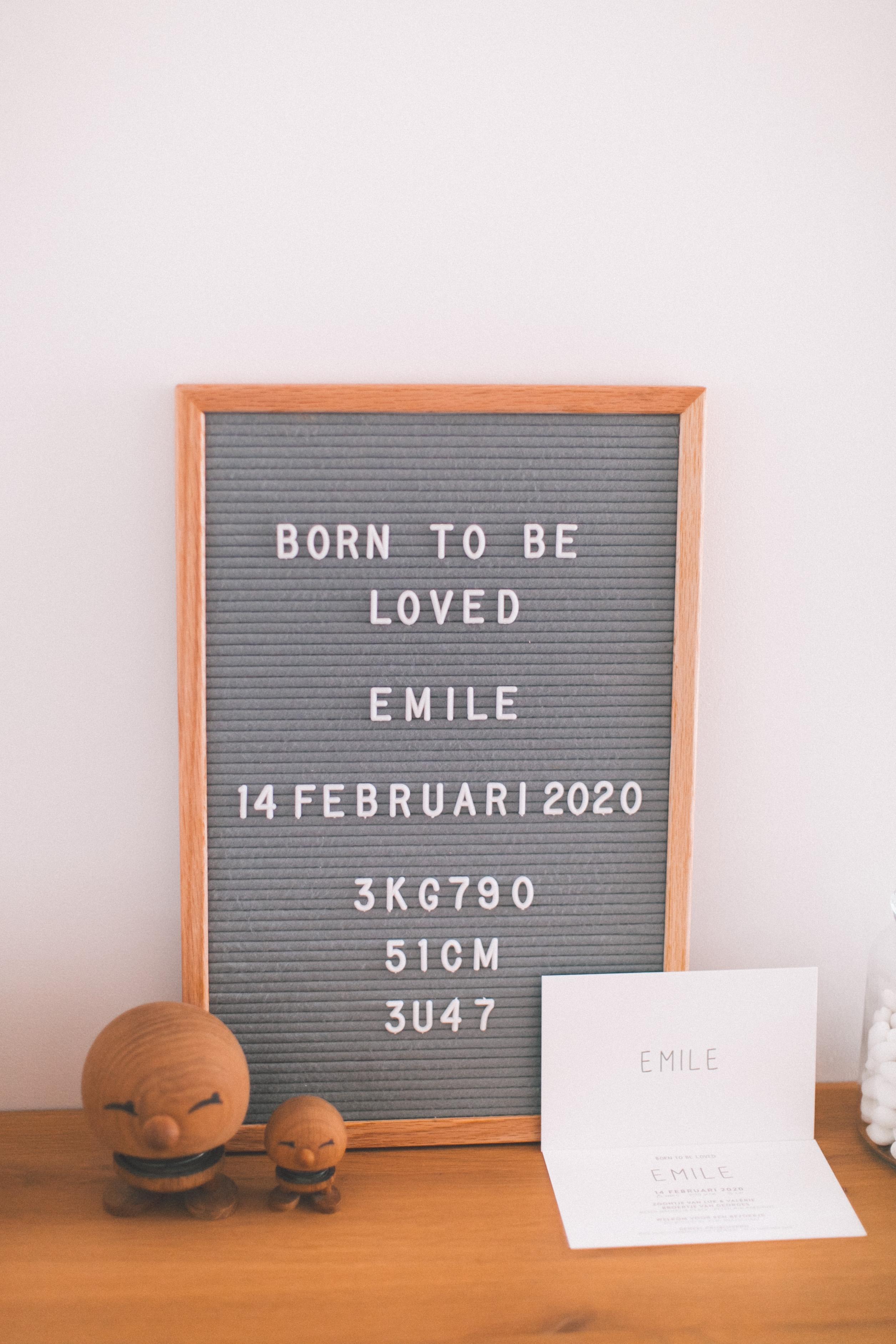 EMILE-9195