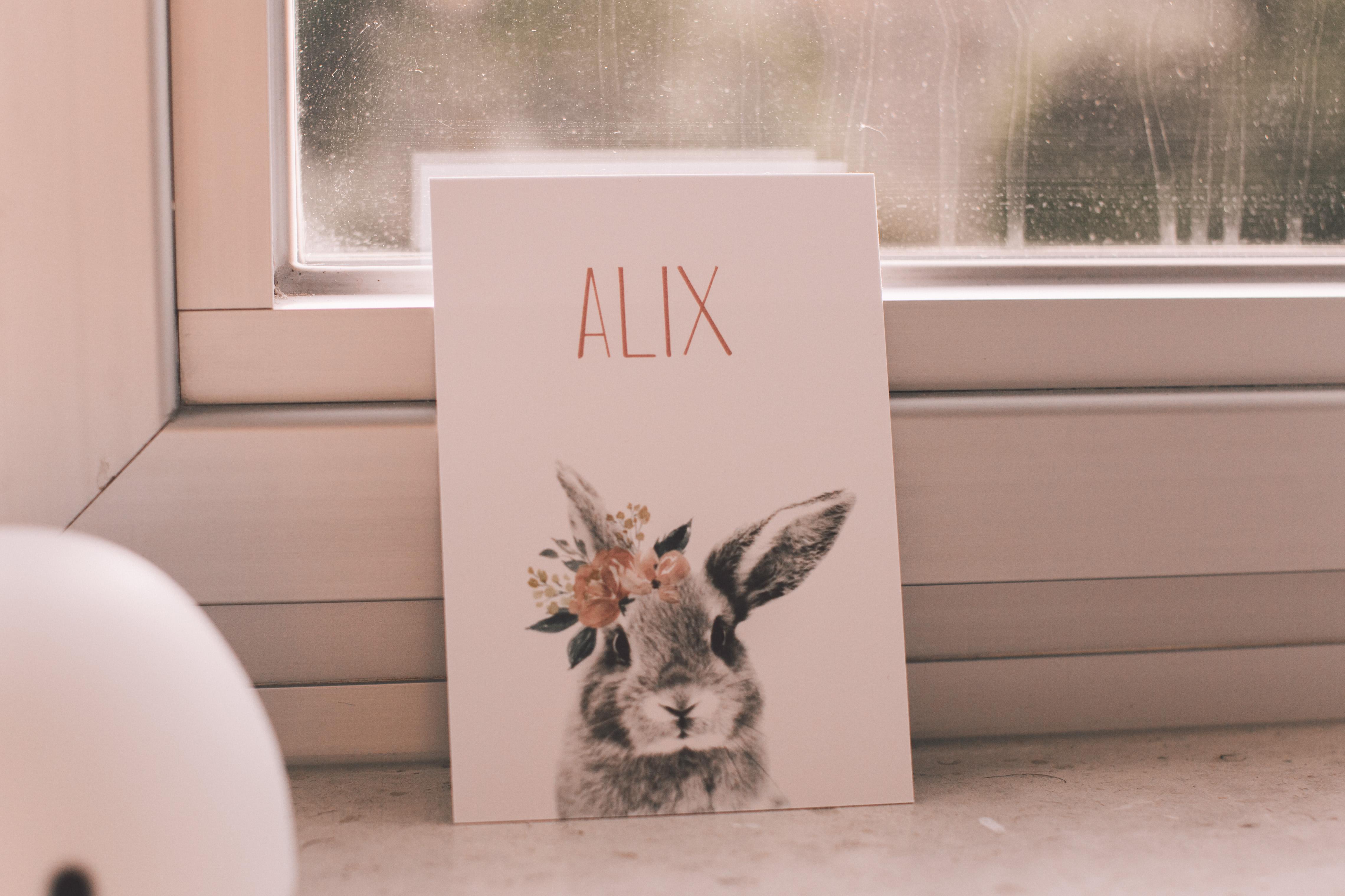 ALIX-9664