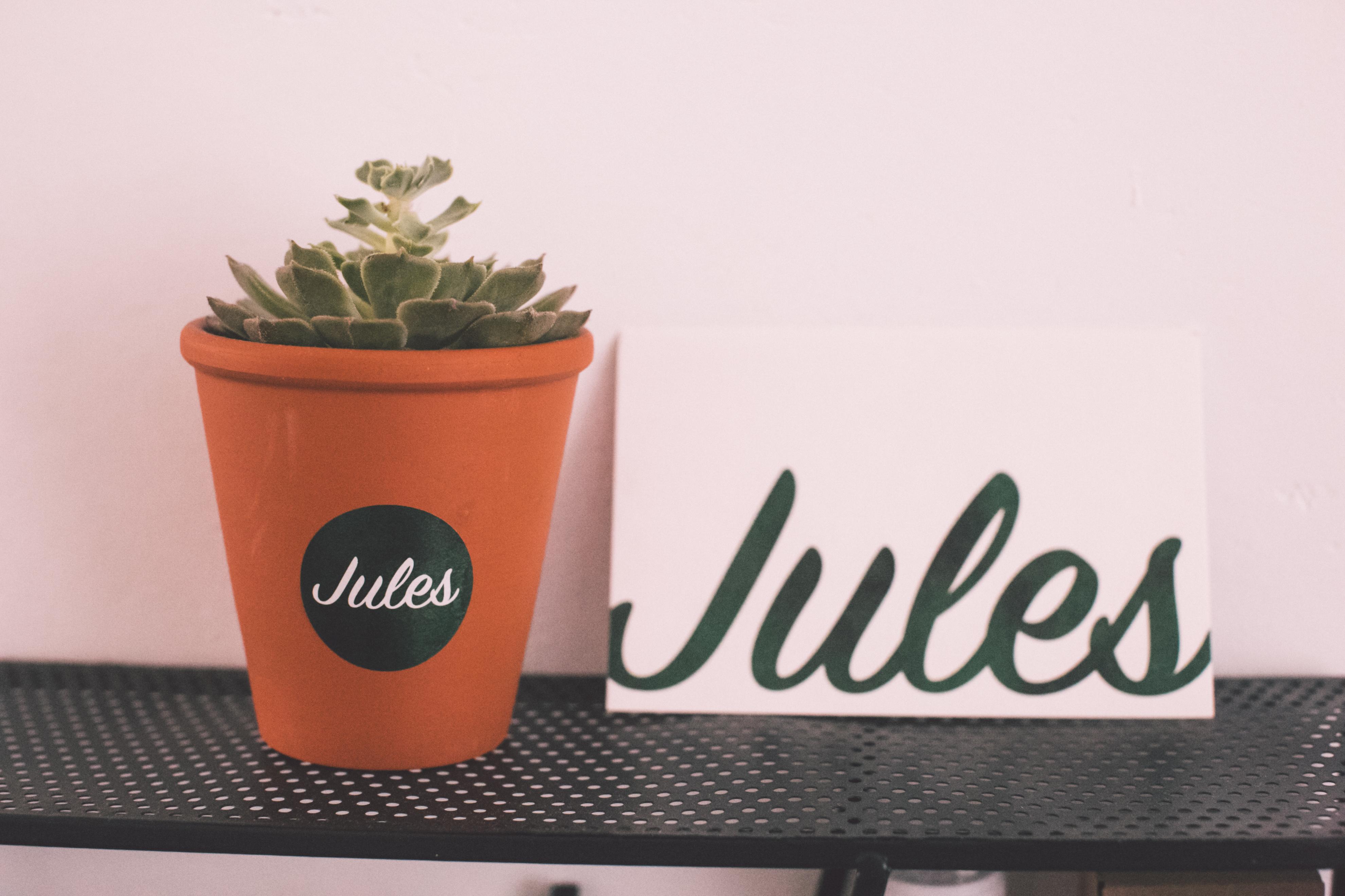 JULES VAN DE PEER-0954